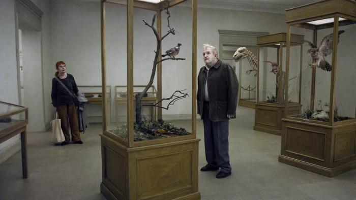Una paloma se posó en una rama a reflexionar sobre la existencia