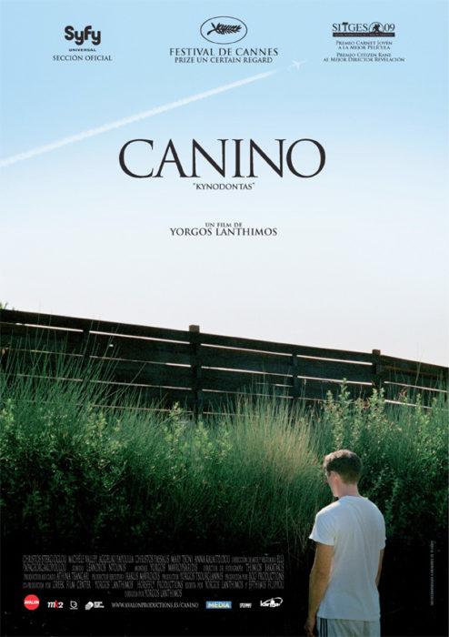 canino20294111